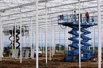 Skleníky o rozhloze tří hektarů na pěstování zeleniny buduje zemědělské družstvo v Haňovicích.