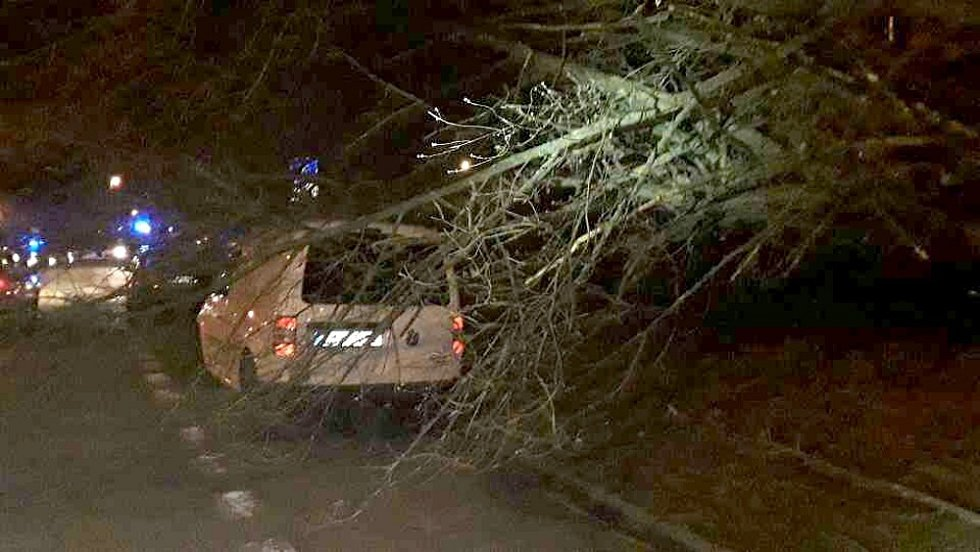 V Uničovské ulici ve Šternberku vichr shodil stromy na několik aut