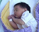 Adéla Ryšavá, Olomouc, narozena 20. června v Olomouci, míra 52 cm, váha 4150 g