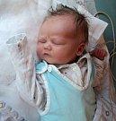 Vilém Ulmann, Šumvald, narozen 3. dubna ve Šternberku, míra 52 cm, váha 3720 g