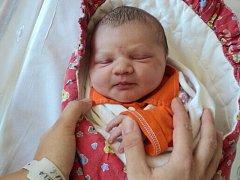 Natálie Němečková, Dubčany, narozena 7. července ve Šternberku, míra 48 cm, váha 2990 g
