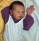 Adam Nedorostek, Šternberk, narozen 22. ledna ve Šternberku, míra 51 cm, váha 3530 g.