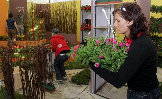 Poslední přípravy před startem 50. ročníku květinové výstavy Flora Olomouc.
