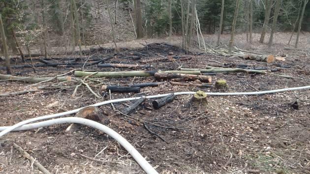 Sobotní požár trávy a lesního porostu v Přerov – Čekyni.
