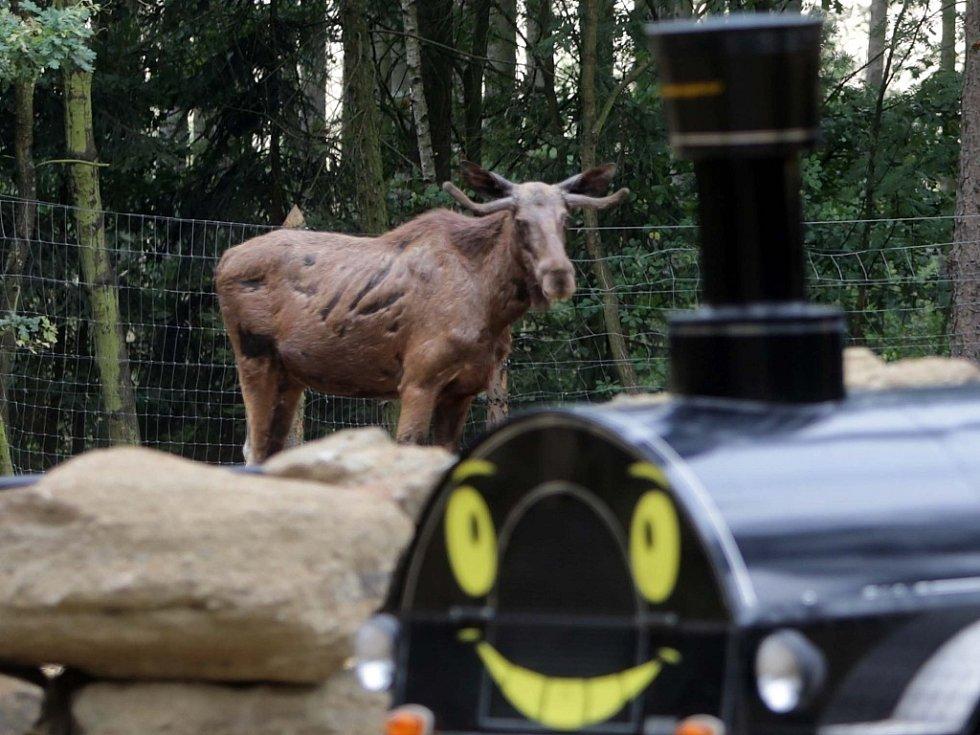 Safari Euroasie v olomoucké zoo na Svatém Kopečku