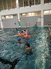 Studie krytého plaveckého bazénu ve Šternberku, jejímž autorem je Ing. arch. Jaroslav Ševčík, řeší návrh krytého bazénu, který obsahuje víceúčelový 25 metrový bazén se šesti dráhami, rekreační a dětskou částí a wellness sceloročním provozem