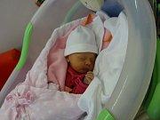 Adéla Absolonová, Bílsko, narozena 19. ledna, míra 48cm, váha 2620 g