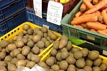 Špatná sklizeň brambor poznamenaná abnormálním suchem zvedla cenu této zeleniny až na dvojnásobek. V prodejně na Dolním náměstí v Olomouci nabízí nyní tuzemské brambory za 14 korun kilo.