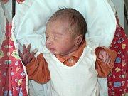 Eliška Dittrichová, Šumvald, narozena 28. února ve Šternberku, míra 48 cm, váha 2780 g