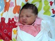 Karolína  Lovašová, Litovel, narozena 28. března ve Šternberku, míra 50 cm, váha 3130 g