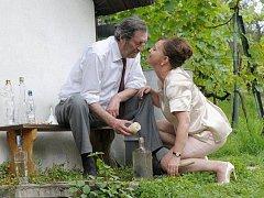 Bolek Polívka a Alena Mihulová ve filmu Domácí péče