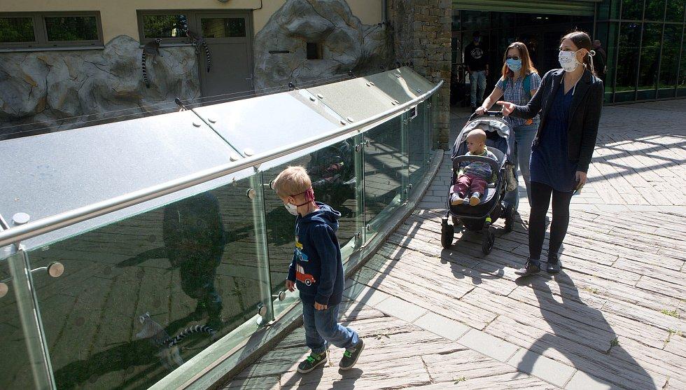 Zoo Olomouc otevřela po koronavirové pauze. Čtvrtek 30. dubna 2020