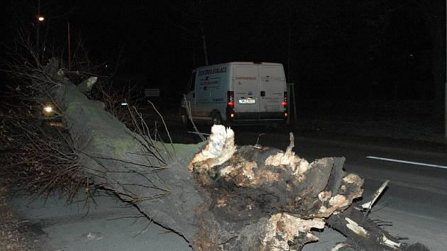 Spadlý strom u domova důchodců ve Chválkovicích.