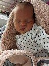 Beáta Hynková, Senice na Hané, narozena 2. ledna, míra 50 cm, váha 3330 g
