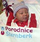 Nela Šišmová, Červenka, narozena 9. ledna ve Šternberku, míra 52 cm, váha 3610 g