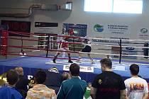 Boxeři Dukly v akci