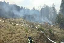 Během 48 hodiny museli hasiči v Olomouckém kraji vyrazit k dvacítce požárů. V Nové Hradečné na Olomoucku hořelo 3,5 hektaru lesa.Autor: HZSOL