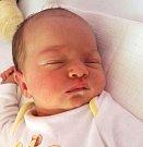Kristýna Faklová, Olomouc, narozena 27. srpna ve Šternberku, míra 51 cm, váha 3560 g