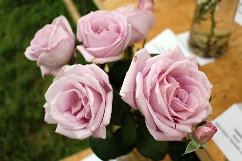Vyznání růžím v olomouckém rozáriu v sobotu 11. července 2020.