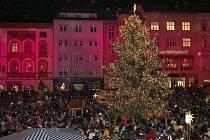 Rozsvícený vánoční strom před olomouckou radnicí