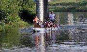 Trénink dračích lodí na řece Moravě v Olomouci