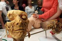 Workshop urgentní medicíny pro studenty s preparáty skutečných částí lidských těl