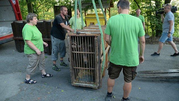 Stěhování medvědů z olomoucké zoo do Českého Krumlova