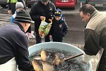 Stánek Rybářství Tovačov u Senima.