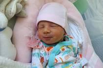 Natálie Halová, Olomouc narozena 23. února míra 49 cm, váha 2900 g