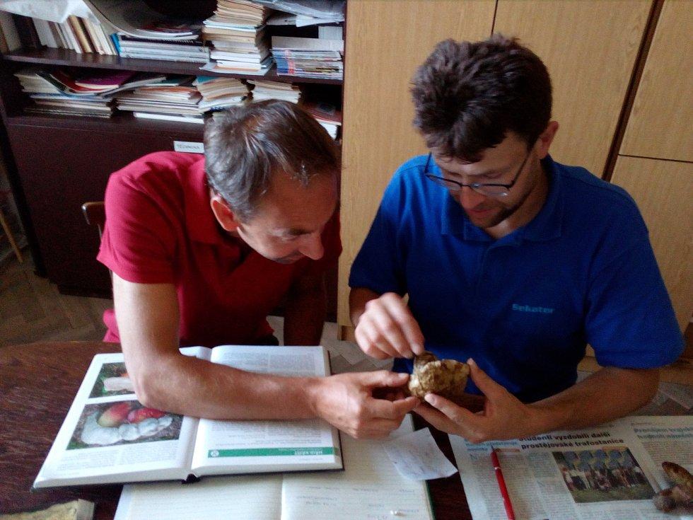 Mykologická poradna v olomouckém vlastivědném muzeu