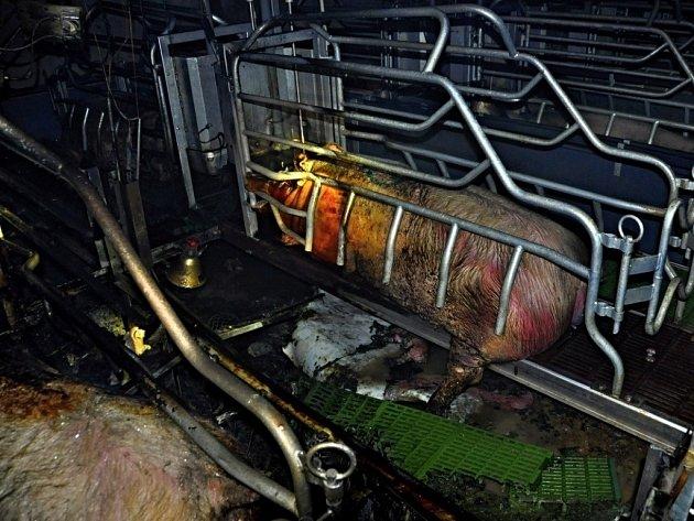 Požár v zemědělském objektu ve Velkém Týnci