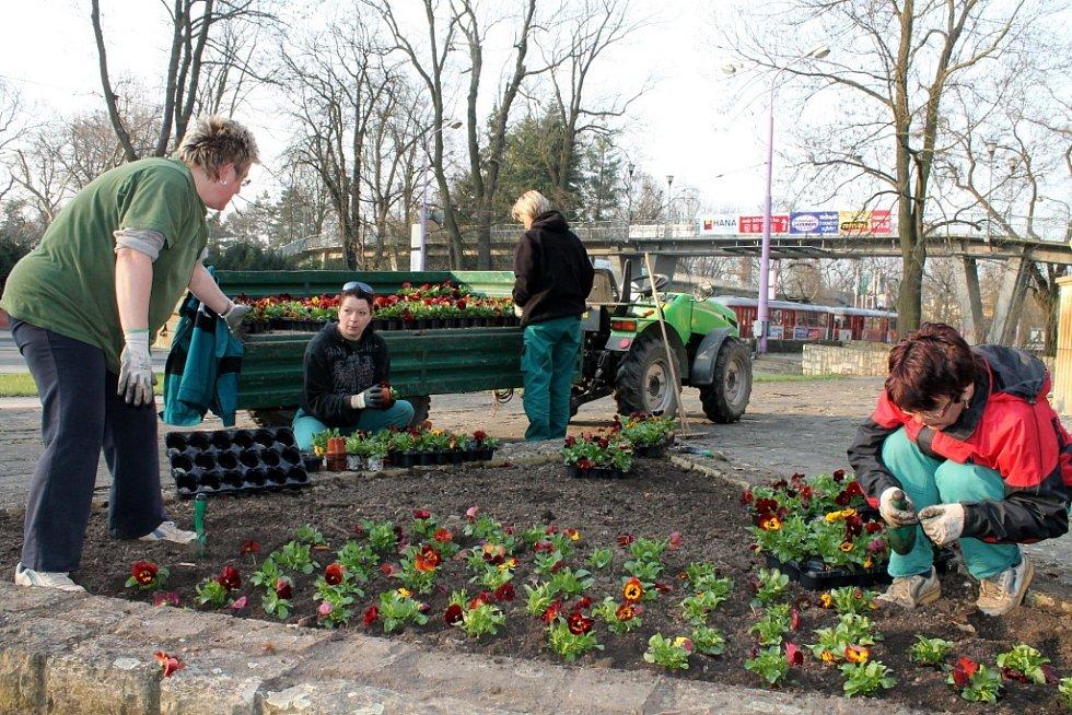 Přípravy na jarní Floru