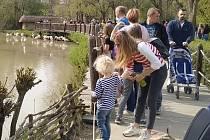První máj ve zlínské zoo, 1. 5. 2021