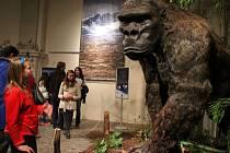 Muzejní noc v olomouckém Vlastivědném muzeu