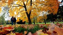 Podzim ve Zlíně, říjen 2021
