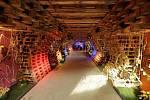 Jarní Flora 2015: tunel do mexické zahrady