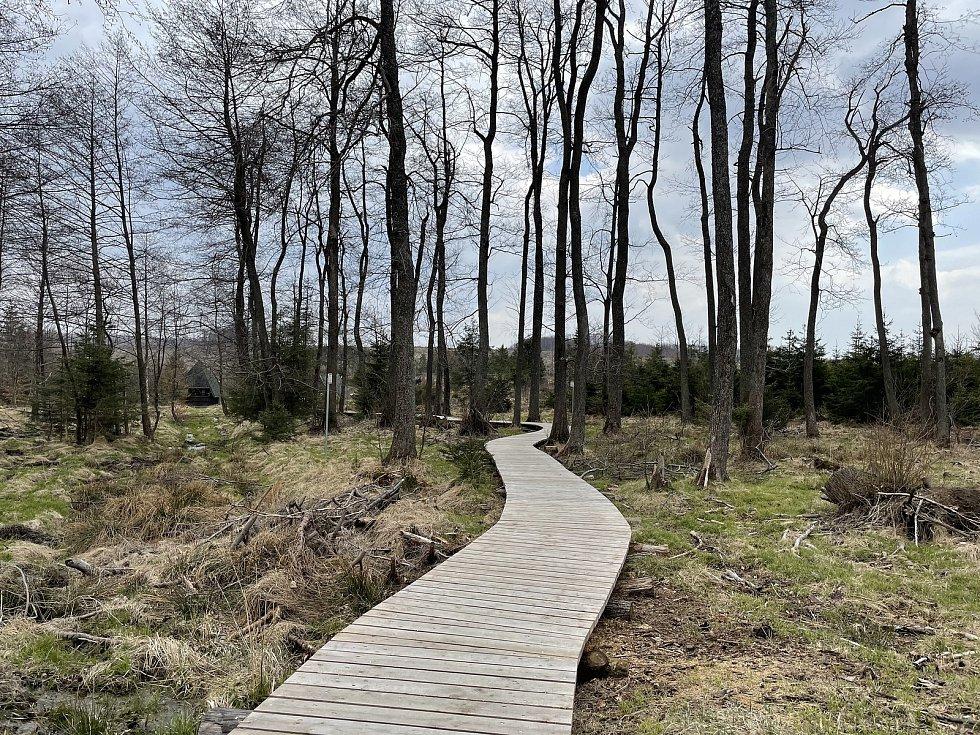 Cesta k pramenu Odry, 24. dubna 2021