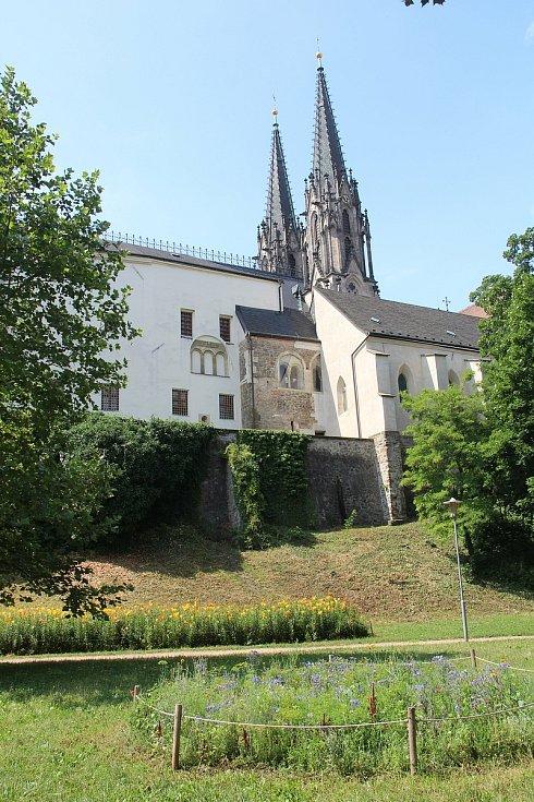 Park pod katedrálou svatého Václava zdobí záhon lilií a květinový záhon.