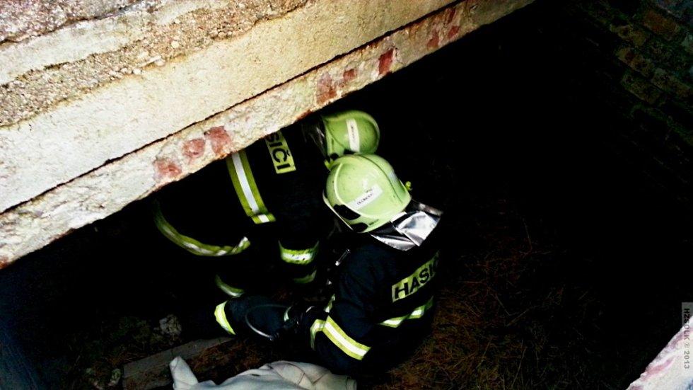 Záchrana srnce uvízlého v hrobce na černovírském hřbitově