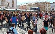 Tvarůžkový festival na Horním náměstí v Olomouci