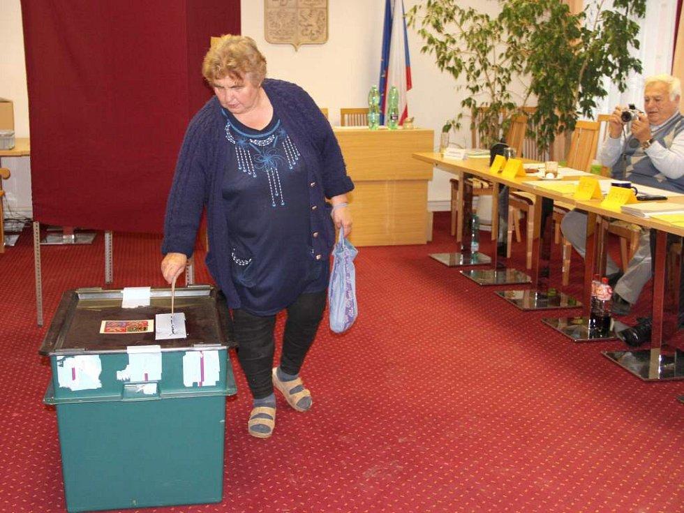Druhé kolo senátních voleb v Těšeticích