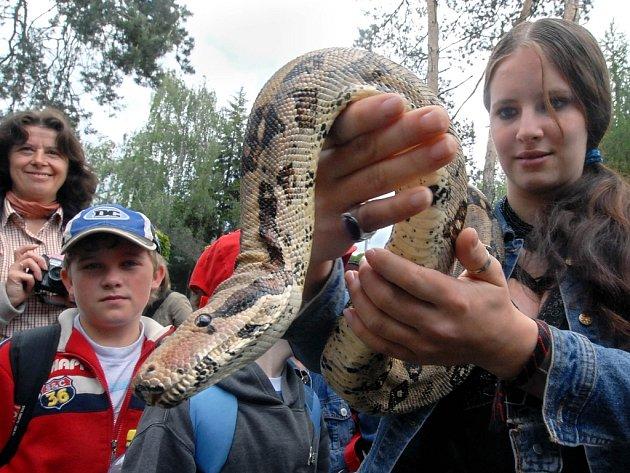 Mladí přírodovědci si za odměnu mohli vyzkoušet, jaké to je držet v rukou hroznýše.