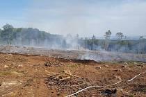 Požár mýtiny na Libavé