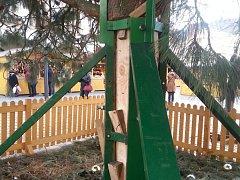 Opatření pro ještě větší ukotvení olomouckého vánočního stromu