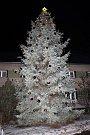 Vánoční strom v Seloutkách