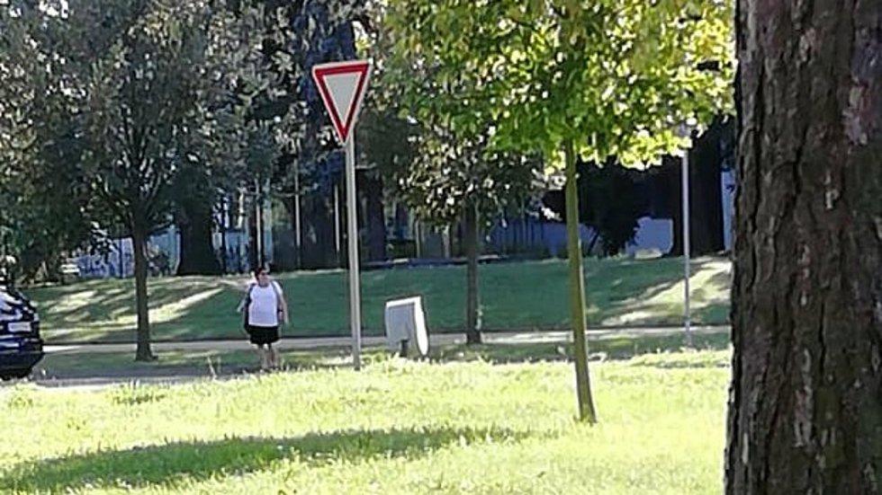 Stopařka na Olomoucku zachycená mobilem řidiče