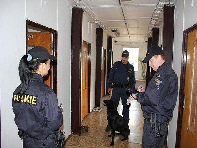 Cizinecké policie v akci