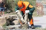 Jesenický dřevorubec na korunní pevnůstce v Radíkově