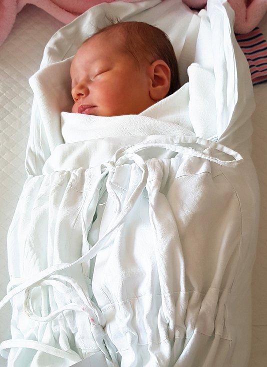 Aneta Nedělníková, Kobeřice, narozena 30. března v Prostějově, míra 53 cm, váha 3800 g