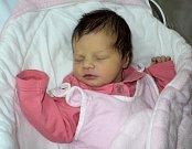 Barbora Sedláčková, Hradečná, narozena 20. listopadu ve Šternberku, míra 49 cm, váha 3230 g